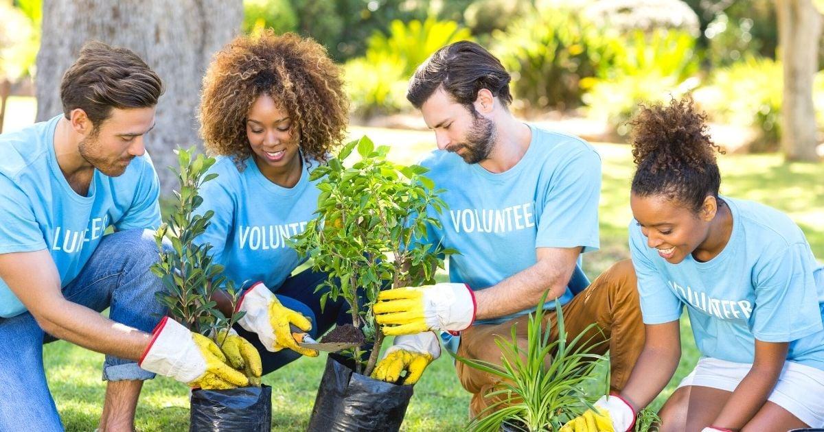 25 Ways to Volunteer in Your Community